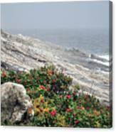maine 13 Pemaquid Lighthouse Shoreline Before Storm Canvas Print