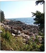 Maine Atlantic Ocean Coast Canvas Print