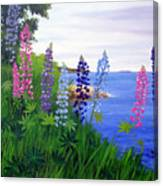Maine Bay Lupine Flowers Canvas Print