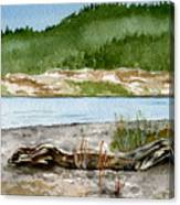 Maine Beach Wood Canvas Print
