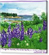 Maine Coast Purple Lupine Art Canvas Print
