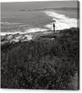 Maine Contemplation Canvas Print