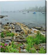 Maine Cove Canvas Print
