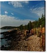 Maine Rocky Coast Canvas Print