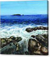 Maine Tidal Pool Canvas Print