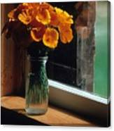 Maine Windowsill Canvas Print
