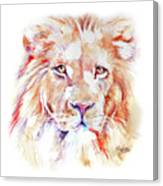Majestic African Lion Canvas Print