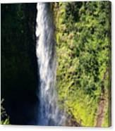 Majestic Akaka Falls Canvas Print