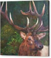 Majestic Canvas Print
