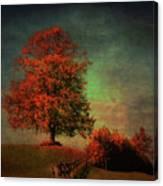 Majestic Linden Berry Tree Canvas Print