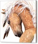 Majestic Palomino #139 Canvas Print