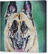Major, The German Shepherd  Canvas Print