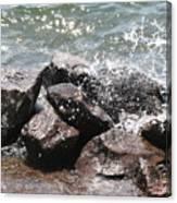 Making A Splash Canvas Print