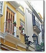 Malaga-2010-20 Canvas Print