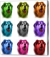 Malamute Dog Art - 6536 - Wb - M Canvas Print