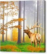 Male Elk Bugling Canvas Print