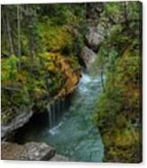 Maligne Canyon Falls Jasper National Park Canvas Print