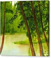 Mallard Lake Bc Canvas Print