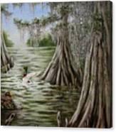 Mallards Canvas Print
