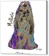 Maltese Pop Art Canvas Print