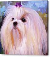 Maltese Portrait - Square Canvas Print