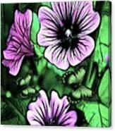 Malva Flowers Canvas Print