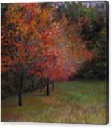 Mama's Dogwoods Canvas Print