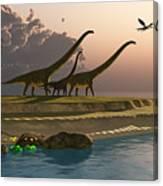Mamenchisaurus Dinosaur Morning Canvas Print