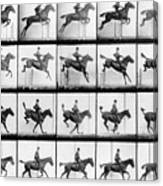 Man And Horse Jumping Canvas Print