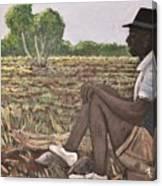 Man In Field Burkina Faso Series Canvas Print