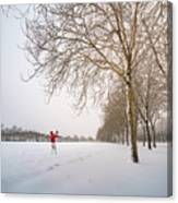 Man In Red Taking Picture Of Snowy Field And Trees Canvas Print