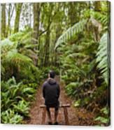 Man Relaxing In Strahan Rainforest Retreat Canvas Print