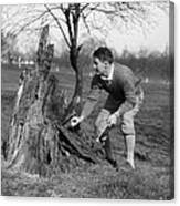 Man Retrieving Golf Ball From Tree Canvas Print