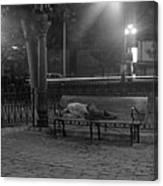 Man Sleeping On Bench Canvas Print