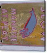 Manatee At Play Canvas Print