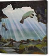 Manatee Cave Canvas Print