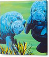Manatee Love Canvas Print
