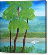 Manatee Refuge Part 1 Canvas Print