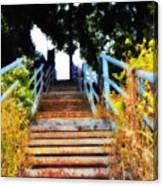 Manayunk Steps Canvas Print