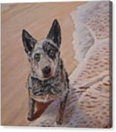 Mancha At The Beach Canvas Print