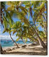 Manchioneel Bay, Cooper Island Canvas Print