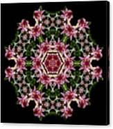 Mandala Monadala  Lisa Canvas Print