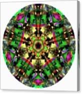 Mandala - Talisman 1107 - Order Your Talisman. Canvas Print