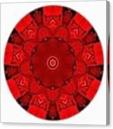 Mandala - Talisman 1541 Canvas Print