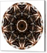 Mandala - Talisman 3705 Canvas Print