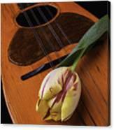Mandolin And Tulip Canvas Print