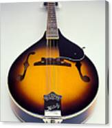 Mandolin  Canvas Print