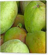 Mangoes Etc. Canvas Print
