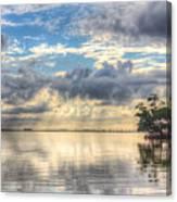 Mangrove Mirrored Dreams Canvas Print