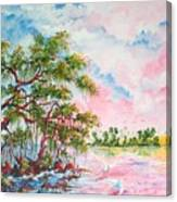 Mangroves Canvas Print